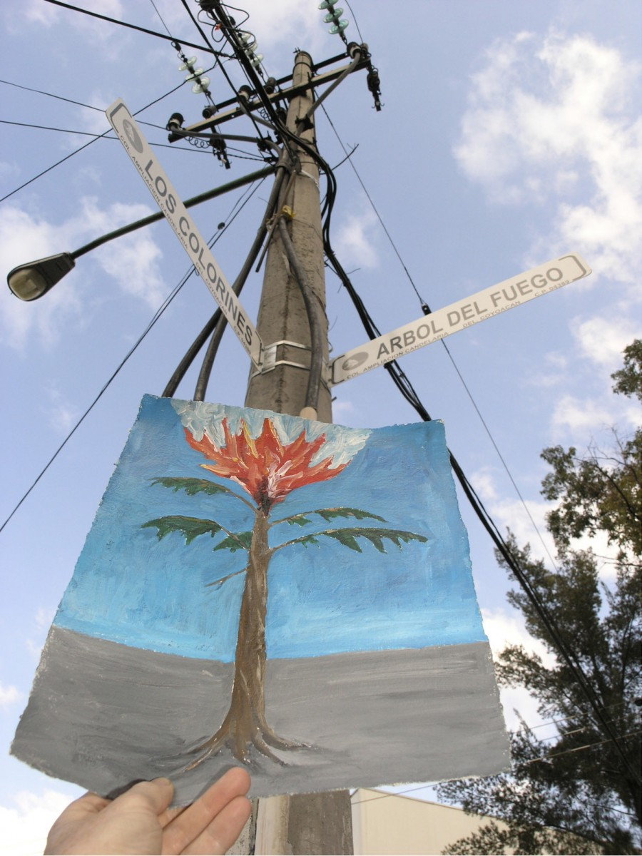 Art Photography, 2005 – Arbol del Fuego<span class='photo-credit'> – Photo: <a href='http://paullitherland.com' target='_blank'>Paul Literland</a></span>                                                <a href='http://paullitherland.com/artsite_wp/wp-content/uploads/2014/05/PaulLitherland-ArtPhotography2005_treepost-900x1200.jpg' target='_blank'><img src='http://paullitherland.com/artsite_wp/wp-content/themes/artpress-child/img/artworkDownloadImg.png' title='télécharger image / download image' /></a>                                                  <!-- FIX!! write if statement here so this href and img only appear when category is 'series' cat=5 see also line 325, so same there --> 												<a href='http://paullitherland.com/arbol-del-fuego/' target='_blank'>  												 <img src='http://paullitherland.com/artsite_wp/wp-content/themes/artpress-child/img/artworkPermalinkIcon.png' title='permalink to photo' /></a>