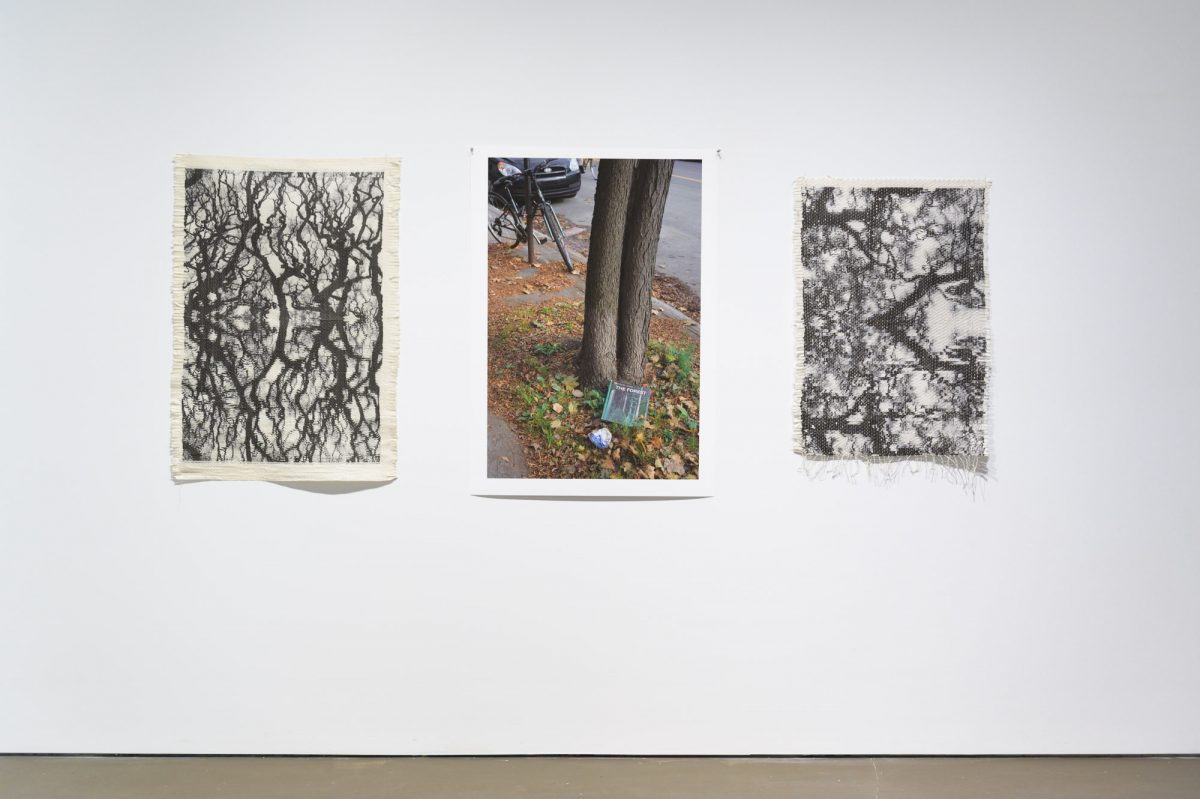 "<i></i>, 2020 – Karen Trask (L-R) Paul Litherland Centre. Trees <span class=""photo-credit""> – Y <a href=""http://paullitherland.com/artsite_wp/wp-content/uploads/2020-04-04-RienProduit-002-1200x799.jpg"" target=""_blank""><img src=""http://paullitherland.com/artsite_wp/wp-content/themes/artpress-child/img/artworkDownloadImg.png"" title=""télécharger image / download image"" /></a>"