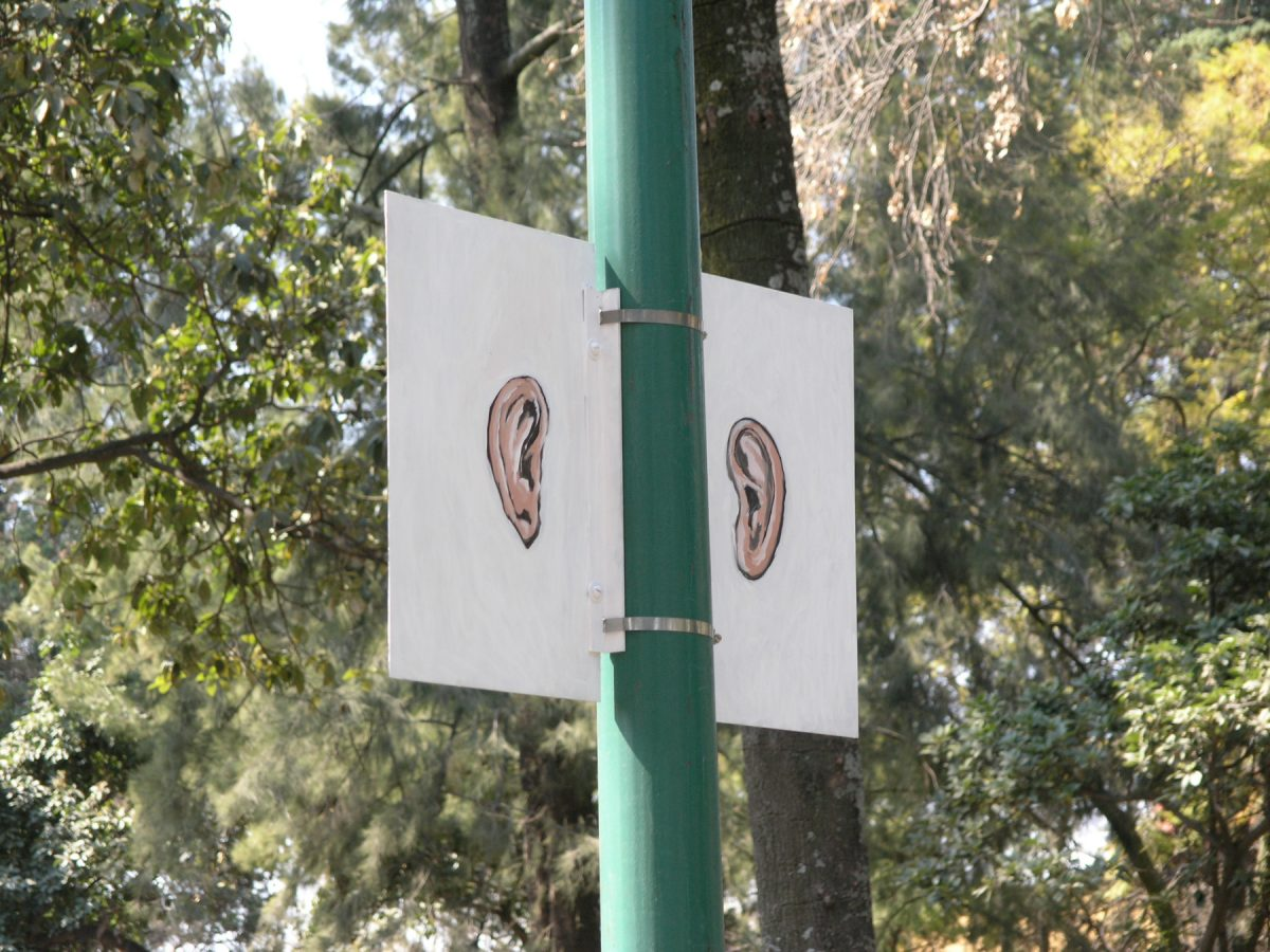Hands Ears, 2006 –  													Light Ears, installation view, Hands Ears, Parque de Tlalpan, 2006