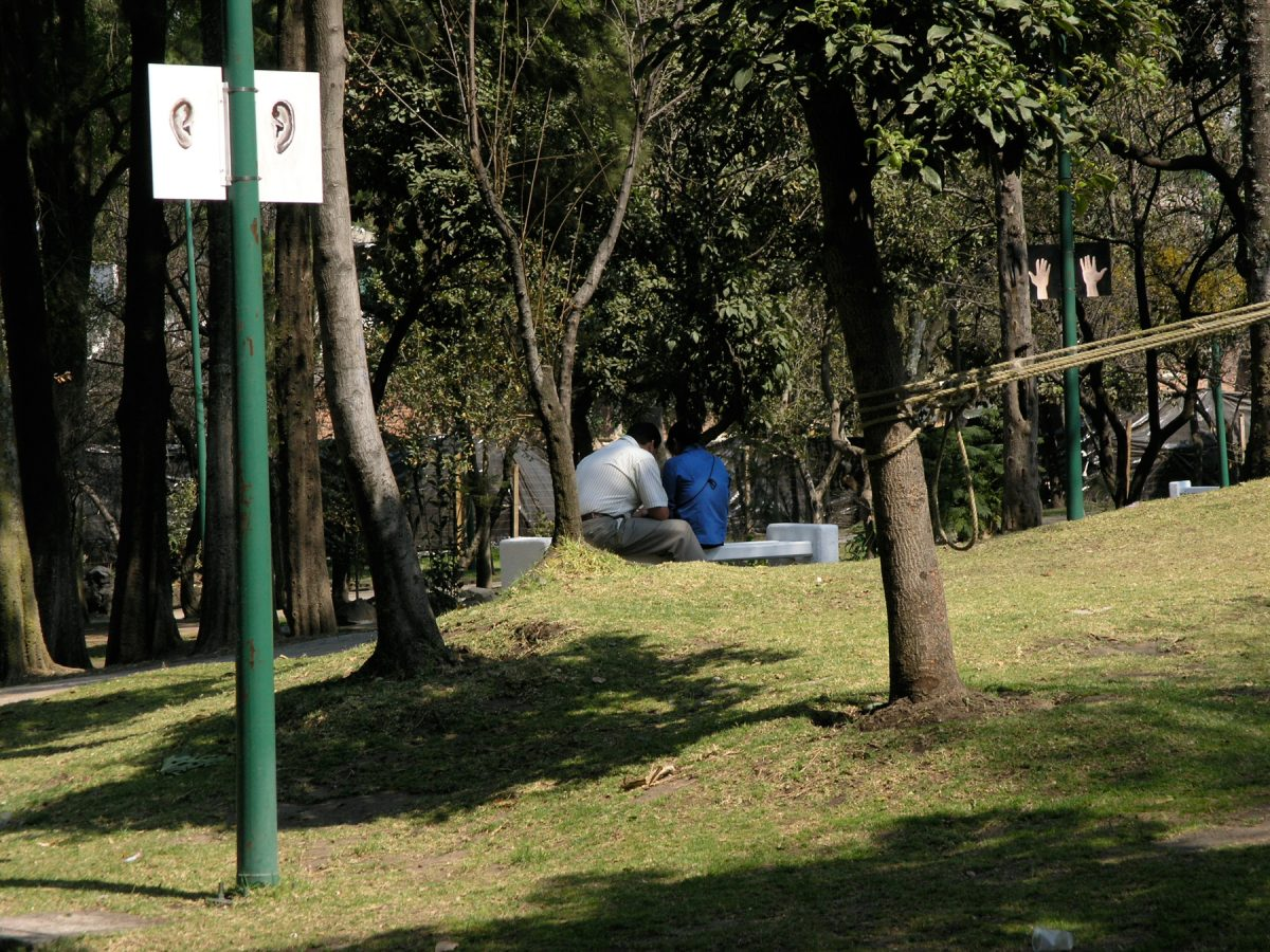 Hands Ears, 2006 –  													Dark Ears, installation view, Hands Ears, Parque de Tlalpan, 2006